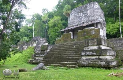Guatemala 2017-Tikal 10